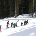 Winter Snowshoe Fun! – (Grades K-1)