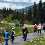Discover Nordic Pole Walking